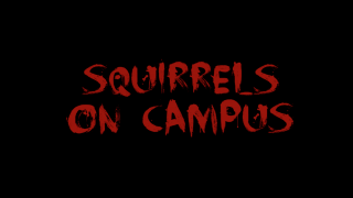 Squirrels on Campus Trailer