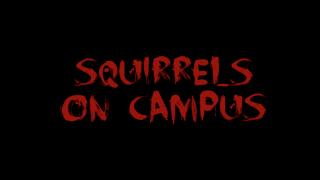 Squirrels on Campus Trailer