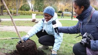 The Vanier Tree Planting Project